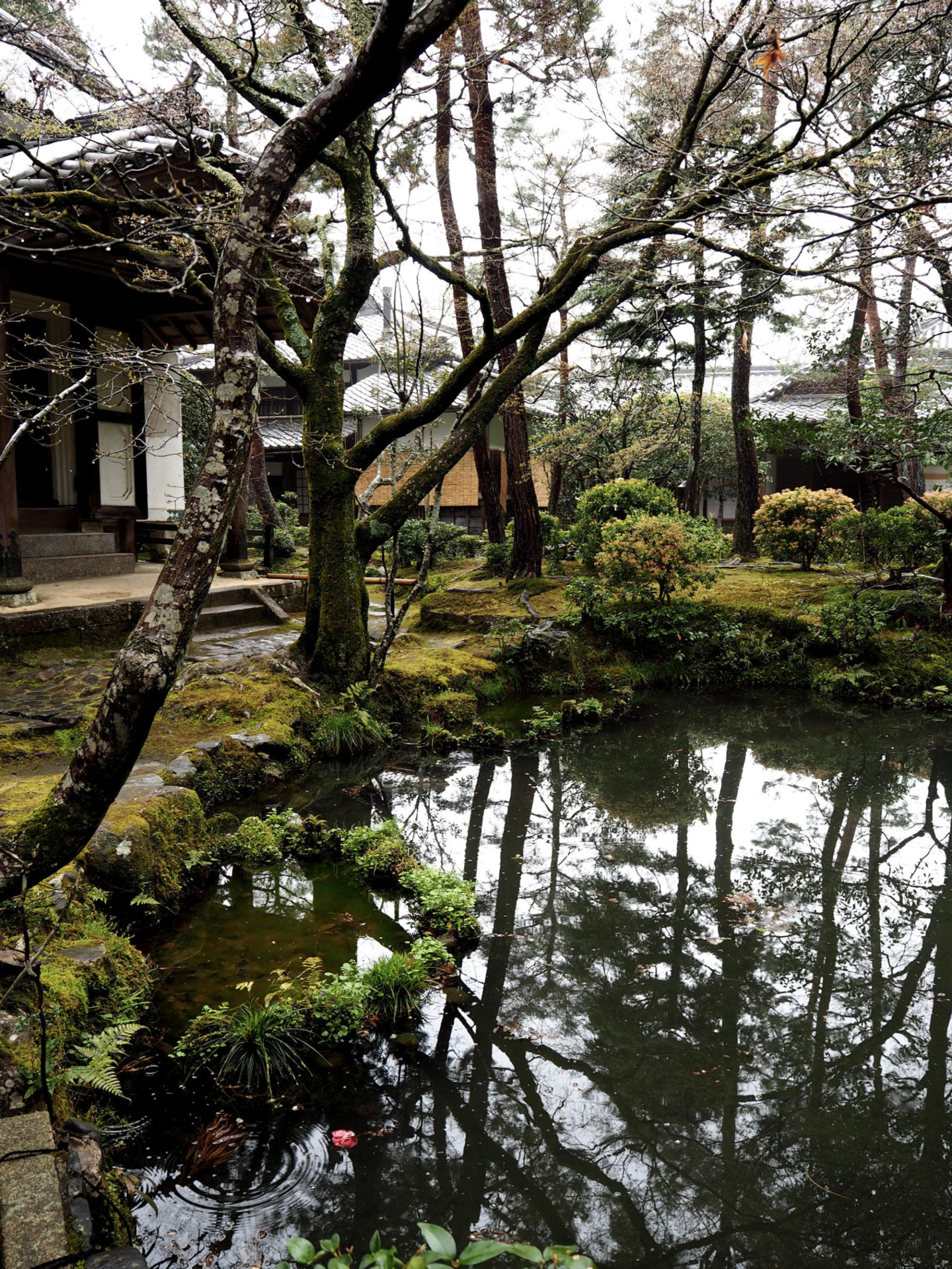 The Two Most Serene Temples In Kyoto